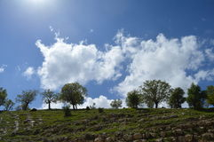 Beautifu niebieskie niebo Fotografia Stock