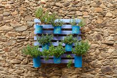 Beautifuful flowerpot recycling. On a stone wall royalty free stock images