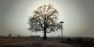 beautifuk日落在印度 免版税库存图片