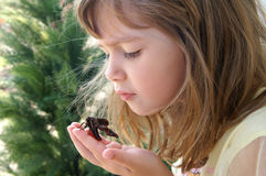 Beautiful. A beautiful young girl holding a moth royalty free stock image