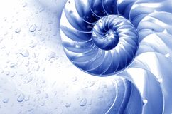 Beautiful abstract background, blue. Colour, напоменающий seashell or stairway Royalty Free Stock Photography