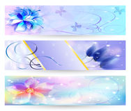 Beautiful abstract background with flowers banner Stock Image