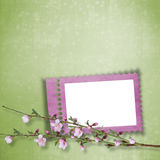 Beautiful abstract background with frame. And branch of Sakura Royalty Free Illustration