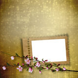 Beautiful abstract background with branch of Sakura Stock Photography