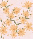 Frame, leaf, green, border, floral, flower, design, nature, abstract, illustration, plant, spring, pattern, decoration, leaves, ar stock illustration