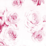 Beautiful abstract paper roses background Royalty Free Stock Photo