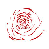 Beautiful abstract sketch red rose isolated on white background. Royalty Free Stock Photo