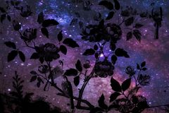 Beautiful abstract tree and flowers on the colorful pink blue purple and the solar system planets background and wallpaper stock image