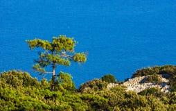 Beautiful Adriatic sea Stock Photography