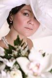 Beautiful adult bride Stock Image