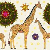 Beautiful adult Giraffe. Hand drawn Illustration of ornamental giraffe. giraffe on white background. Seamless vector illustration