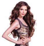 Beautiful adult woman with long brown curly hair. Stock Photos