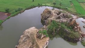 Beautiful Aerial/drone view of rice paddy fields in the slawi city indonesia. Beautiful Aerial/drone view of rice paddy fields in the slawi city, with green stock video footage