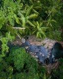 Beautiful aerial scene over a rainforest and small creek. royalty free stock photos