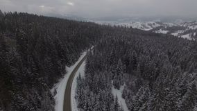 Beautiful aerial view above the winter forest. 4k stock video