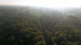Beautiful aerial view of a city park in potsdam schloss sanssouci stock video