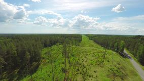 Beautiful Aerial View of Electric Line & Forest During Summer. stock video footage