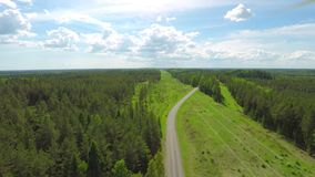 Beautiful Aerial View of Electric Line & Forest During Summer. stock footage