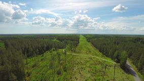 Beautiful Aerial View of Electric Line & Forest During Summer. stock video