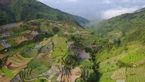 Aerial view footage of farmland in Dieng. Beautiful aerial view footage of farmland with terraced system irrigation in Dieng Plateau, Wonosobo, Central Java stock video