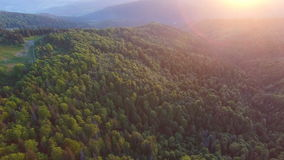 Beautiful aerial view of forest in mountains on sunset stock video footage