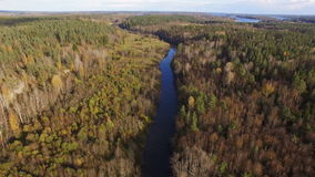 Beautiful aerial view of forest river in Karelia stock footage