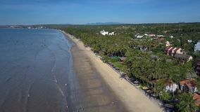 Hotels Surrounded by Palms Located along Seashore. Beautiful aerial view modern hotels surrounded by exotic palms and located along seashore in tourist city stock footage