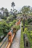 Aerial view of a part the gardens of the alcazar in Seville stock images