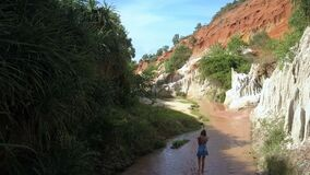 Girl Walks along Stream in Old Canyon Aerial View. Beautiful aerial view popular canyon and girl walks along clayey stream between stones and palm trees stock footage