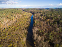 Beautiful aerial view of a small river in the forest Royalty Free Stock Images