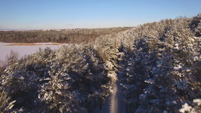 Beautiful aerial view of snow-covered forest stock video footage