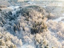 Beautiful aerial view of snow covered pine forests. Rime ice and hoar frost covering trees. Winter landscape near Vilnius, royalty free stock images