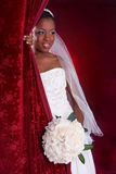 Beautiful African American Bridal Portrait Stock Image