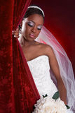 Beautiful African American Bridal Portrait Royalty Free Stock Photography