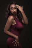 Beautiful African-American fashion model. Stock Images