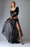 Beautiful African American model posing classy Stock Photography