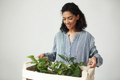 Beautiful african girl florist or botanist smiling holding or carrying wooden box with plants over white wall. Stock Photography