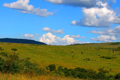 Beautiful african landscape Royalty Free Stock Images
