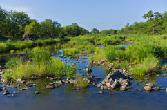 Beautiful african river landscape Stock Photography