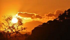 Beautiful african sunset Stock Photography