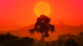 Free Beautiful African Sunset With A Big Tree. Silhouette Of Big Tree Over Big Setting Sun. Forest Sun Set. Epic Nature Background. Eco Stock Images - 151429134