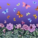 Beautiful African violet flowers and flying butterflies on purple background. Seamless floral pattern. Watercolor painting. Hand drawn and painted illustration royalty free illustration