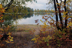 Beautiful afternoon in the autumnal park Royalty Free Stock Photo