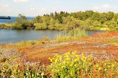 Beautiful afternoon at the lake. In the end of the summer,the autumn color is coming in the nature Stock Photography