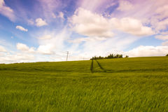 Beautiful, afternoon landscape with growing ray Stock Image