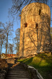 Beautiful afternoon light in park with old castle ruins. Beautiful afternoon light in public park with green grass and old castle ruins. Shot in Cesis, Latvia Stock Images