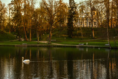 Beautiful afternoon light in park reflecting in pond. Beautiful afternoon light in public park with green grass and Christ Transfiguration Orthodox Church in Royalty Free Stock Images