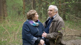 A beautiful aged couple sitting on a fallen tree in a park. They talk gently to hold hands. Loving relationships stock footage