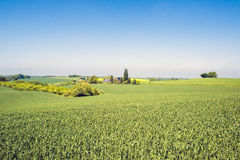 Agrarian landscape with farm Royalty Free Stock Images