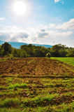 Beautiful agricolture landscape Royalty Free Stock Image